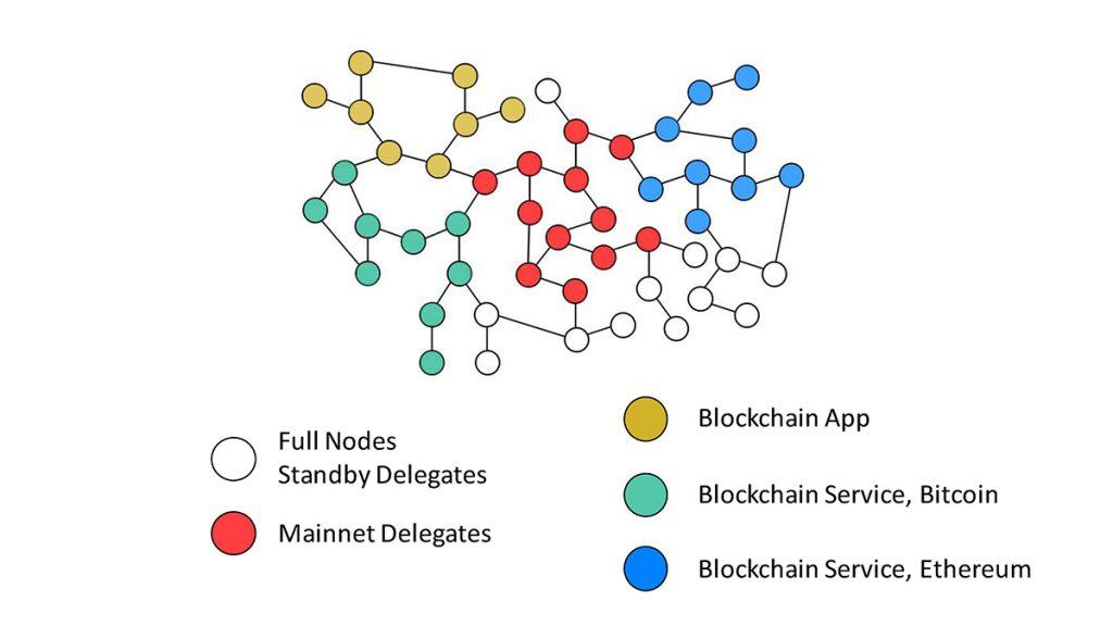 Как делегаты защищают sidechain network