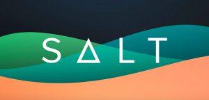 Обзор криптовалюты SALT Lending (SALT)