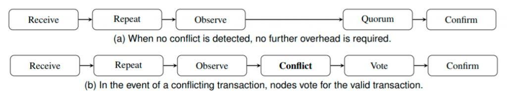 Делегированные узлы только проверяют конфликтующие транзакции