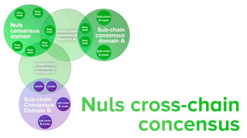 NULS C3D