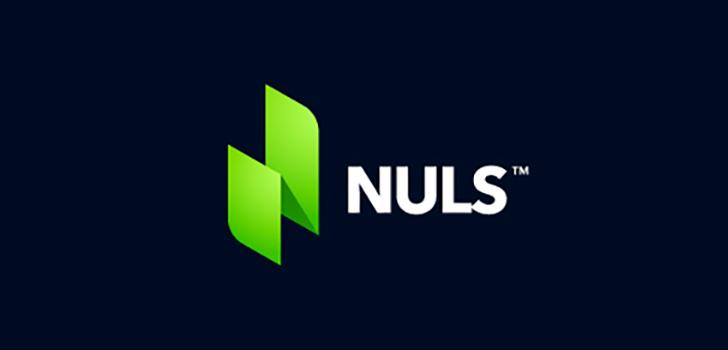 Обзор криптовалюты NULS